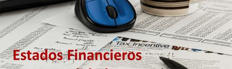 AUDITORÍA DE ESTADOS FINANCIEROS CONSOLIDADOS