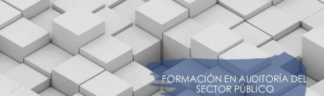 FORMACIÓN EN AUDITORÍA DEL SECTOR PÚBLICO